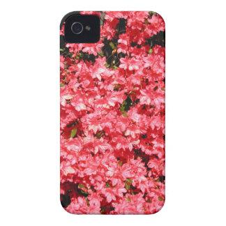 ツツジ。 かわいらしいピンクの花の多く Case-Mate iPhone 4 ケース