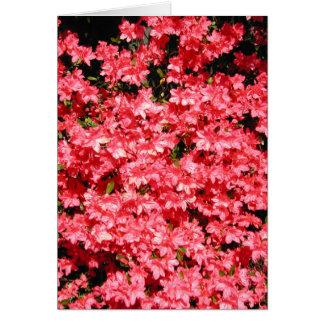 ツツジ。 かわいらしいピンクの花 カード