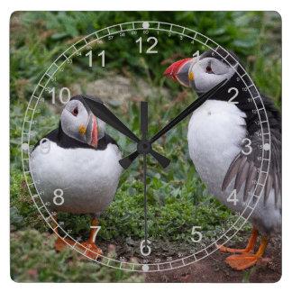 ツノメドリのカップル スクエア壁時計