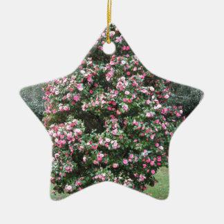 ツバキのjaponicaの花の古代栽培品種 セラミックオーナメント