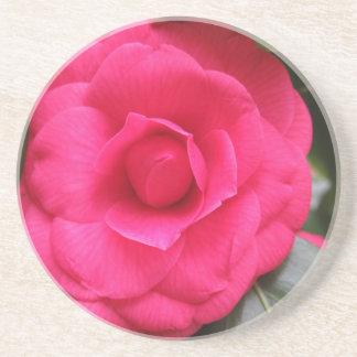 ツバキのjaponica Rachele Oderoの赤い花 コースター