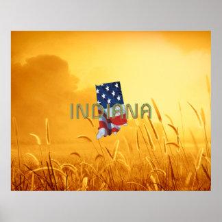 ティーのインディアナの愛国者 ポスター