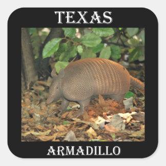 テキサス州のアルマジロ スクエアシール