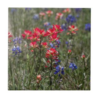 テキサス州のインドのペイントブラシおよびBluebonnetの野生の花 タイル