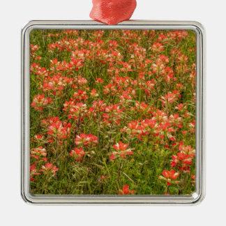 テキサス州のインドペイントブラシ野生の花 メタルオーナメント
