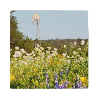 テキサス州の丘の国の野生の花そして風車 ウッドコースター