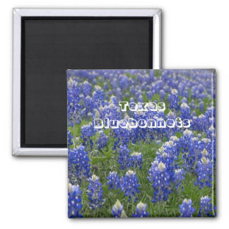 テキサス州の州花のBluebonnetsの磁石 マグネット