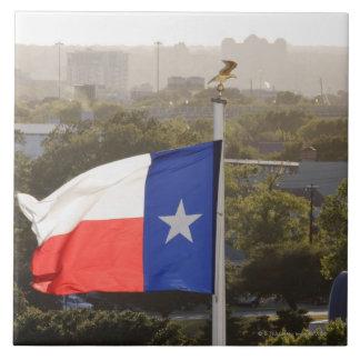 テキサス州の旗 正方形タイル大