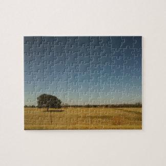 テキサス州の空 ジグソーパズル