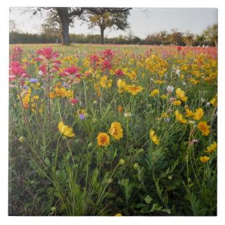 テキサス州の路傍の野生の花、春 タイル
