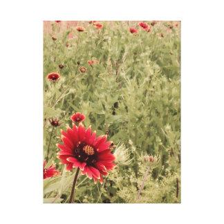 テキサス州の野生の花のインディアン毛布 キャンバスプリント