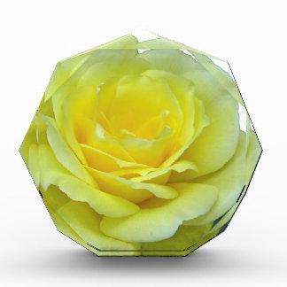 テキサス州の黄色バラ、か。 表彰盾