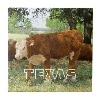 テキサス州牛景色 タイル