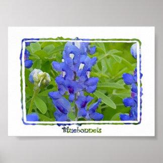 テキサス州Bluebonnetsのデジタル水彩画ポスター ポスター