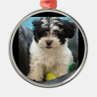 テニス・ボールの救助の子犬 メタルオーナメント