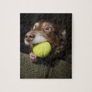テニス・ボールを持つ犬 ジグソーパズル