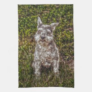 テリアのシュナウツァーペット犬恋人の犬の品種 キッチンタオル