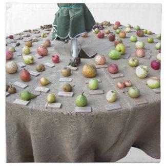 テーブルのコレクションは実を結びます ナプキンクロス