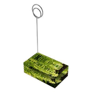 テーブルカードホルダー-トラのシダ テーブルカードホルダー