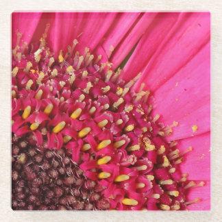 デイジーのコースター-花のコレクション ガラスコースター