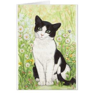 雛菊と白黒猫 グリーティング・カード