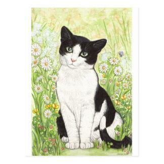 デイジーの白黒猫 ポストカード