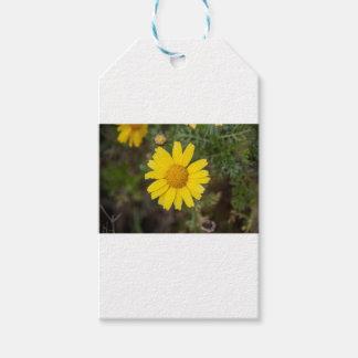 デイジーの花のCUの黄色 ギフトタグ