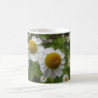 デイジーの花 コーヒーマグカップ