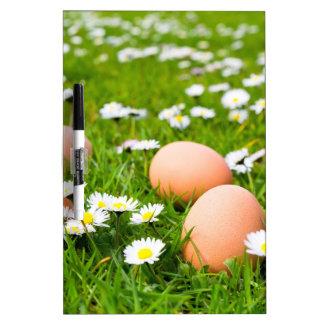 デイジーの草の鶏の卵 ホワイトボード
