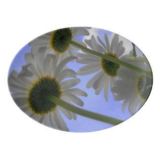 デイジー日 磁器大皿