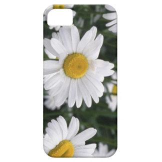 デイジー第5記念日のための花 iPhone SE/5/5s ケース
