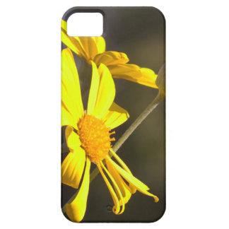 デイジー iPhone SE/5/5s ケース