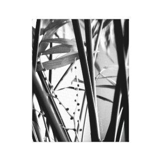 デジタル写真のjjheleneのキャンバスプリントB&W キャンバスプリント