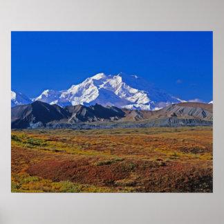 デナリDenaliの国立公園、アラスカ ポスター