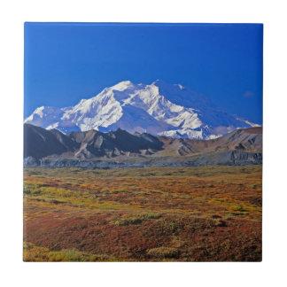 デナリDenaliの国立公園、アラスカ 正方形タイル小