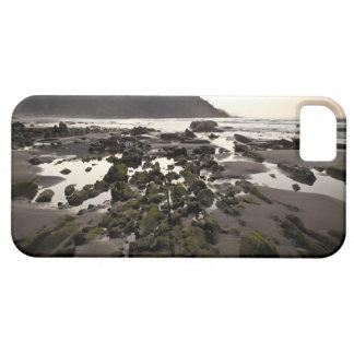デバ、バスク語Guipuzcoaの海岸のフリッシュ iPhone SE/5/5s ケース