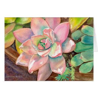 デブラリーBaldwin著ピンクのEcheveriaの挨拶状 カード