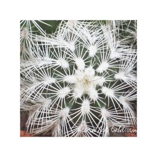 デブラリーBaldwin著星形のサボテン キャンバスプリント
