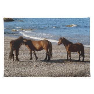 デボンのビーチ3のDartmoorの南子馬の干潮 ランチョンマット