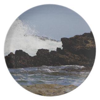 デボンの南海岸の東のPrawleの野生の海.1. プレート