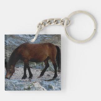 デボンの遠隔南ビーチの石のDartmoorの子馬 キーホルダー