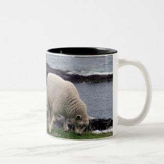 デボンの遠隔野生の南海岸線の子ヒツジ ツートーンマグカップ