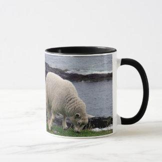 デボンの遠隔野生の南海岸線の子ヒツジ マグカップ