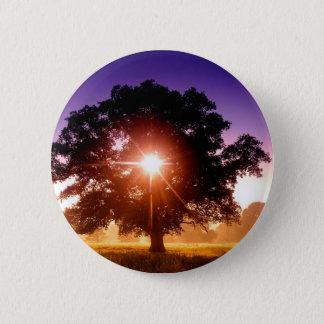 デボンイギリス木の生命の樹 5.7CM 丸型バッジ