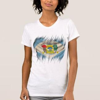 デラウェア州 Tシャツ