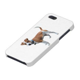 デンマークのスウェーデン語Farmdog iPhone SE/5/5sケース