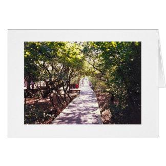 デービス公園の遊歩道、火の島 カード