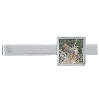 トウモロコシのふさのメスの北の(鳥)ショウジョウコウカンチョウ シルバー タイバー