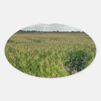 トウモロコシの当惑 楕円形シール