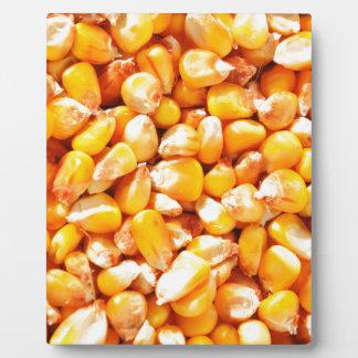 トウモロコシの質 フォトプラーク